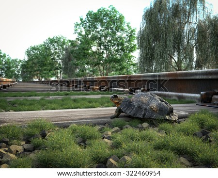 Railway track crossing rural landscape and turtle. Travel concept - stock photo