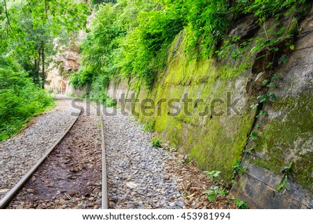 Railway track in verdant tropical rainforest - stock photo