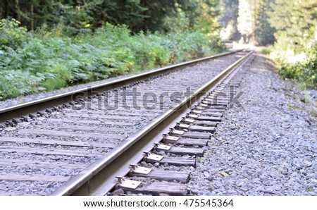 Railway track winding through forest