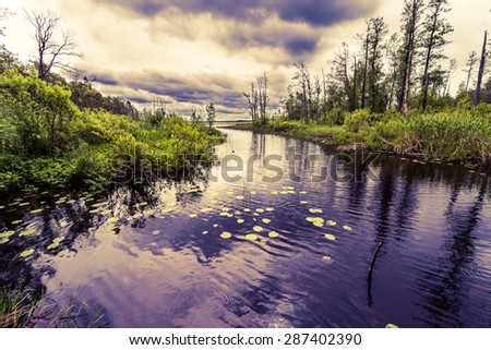 Rain clouds over the forest lake. Image in the yellow-blue toning - stock photo