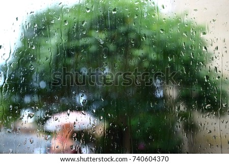Rain drop on window glass with blur tree background.