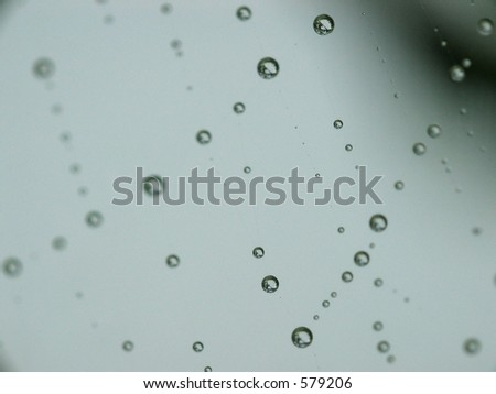 Rain drops on a spider web.
