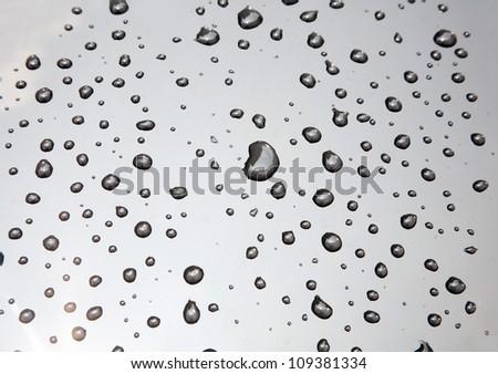 rain drops on black car roof/rain drops on car window - stock photo