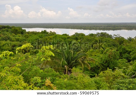 Rain Forest and Lagoon View in Central America Belize - stock photo