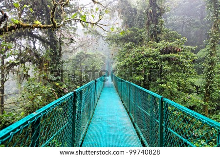 Rain forest in Monteverde, Costa Rica, Central America - stock photo