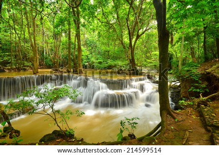 Rain Forest Waterfalls - stock photo