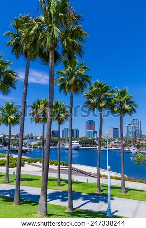 Rainbow Harbor waterfront with palm trees and boats in front of city skyline at Long Beach , CA  - stock photo