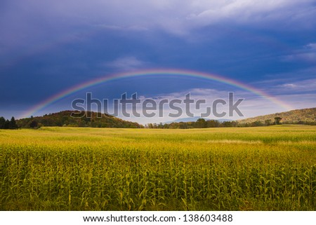 Rainbow over a corn field, Stowe Vermont, USA - stock photo