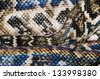 Rainbow Snake Skin - stock photo