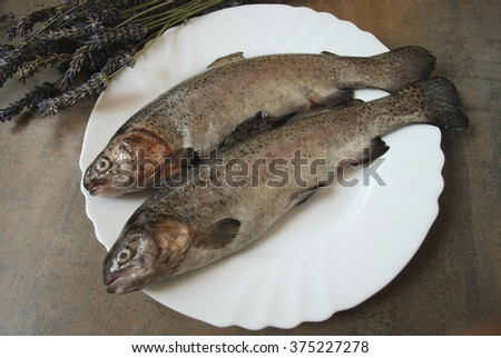 Rainbow trout on the white dish.
