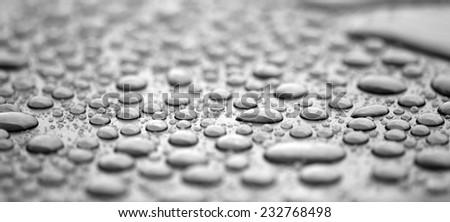 Raindrops - stock photo