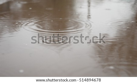 raindrops in puddle of water blue splash autumn nature overcast gloomily