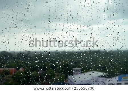 raindrops on glass pane. - stock photo