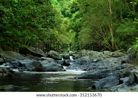 rainforest creek, near Cairns, North Queensland, Australia