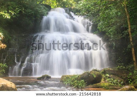 rainforest waterfall and rocks covered with moss