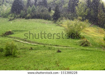 Raining in Mountains. Beskid, Poland.