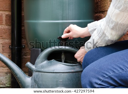 rainwater tank or water butt, woman filling watering can with water from the water butt tap. - stock photo