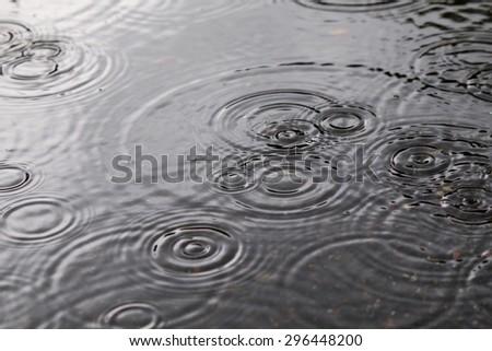 Rainy day, Rain and water ripples - stock photo