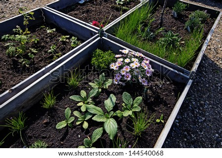 Raised Bed with flowers and fresh spring vegetables - stock photo