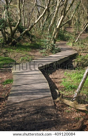 Raised wooden boardwalk covered in wire mesh over stream in woodland with trees.