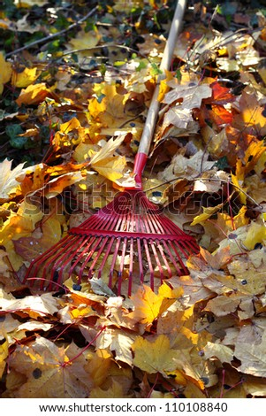 rake and leaves in the garden - stock photo