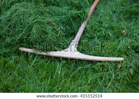 Rake lying on grass  - stock photo