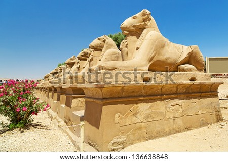 Ram headed sphinxes at Karnak temple, Luxor in Egypt - stock photo