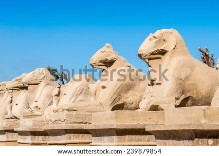 Ram statues of the Karnak temple, Luxor, Egypt (Ancient Thebes with its Necropolis). UNESCO World Heritage site