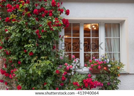 Rambling roses and flowers on the wall at a house window - stock photo