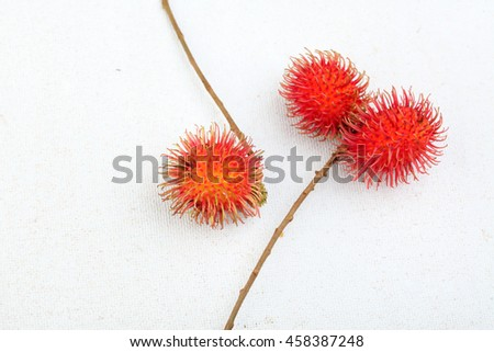 Rambutan fruits on a white background