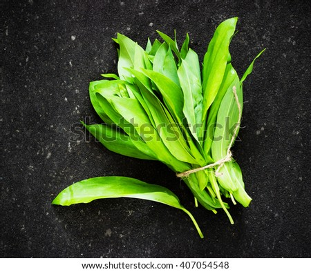 ramson (bear garlic) bunch tied with rope on old dark black background - stock photo