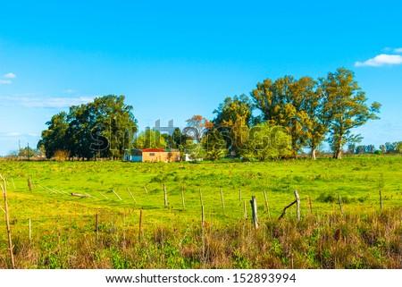 Ranch in Uribelarrea, Argentina - stock photo