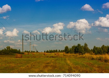 Ranches of hay in a meadow