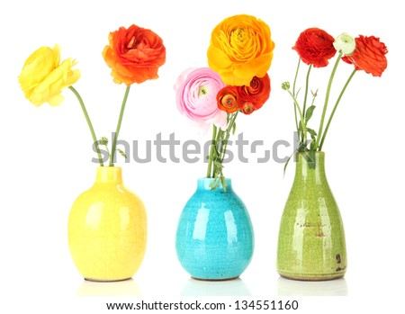 Ranunculus (persian buttercups) in vases, isolated on white - stock photo