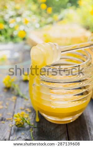 Rape honey in jar with dipper on rustic wooden table over flowers garden background - stock photo