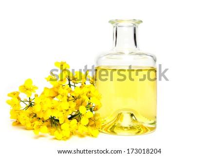 Rape oil - stock photo