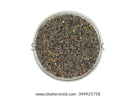 rape seeds in a glass container on a white background