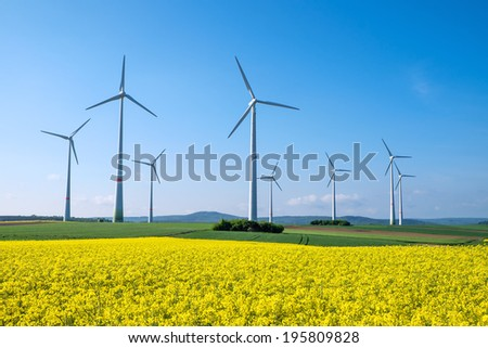 Rapeseed and windwheels - stock photo