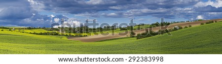 Rapeseed yellow fields in spring with blue sky and hills,  natural eco seasonal floral background, panorama - stock photo