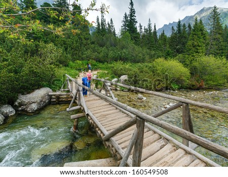 Rapid mountain stream  and family on wooden bridge. Summer cloudy view (High Tatras, Slovakia) .