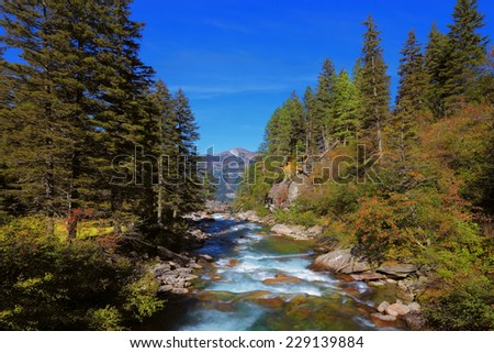 Rapid mountain stream of coniferous forests. Pastoral in the Alpine mountain valley in Austria. Cascades of cold water at the source of the famous Krimml waterfalls - stock photo