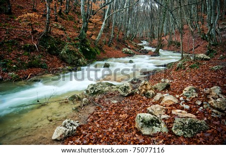 rapid river stream among mountain autumn forest - stock photo