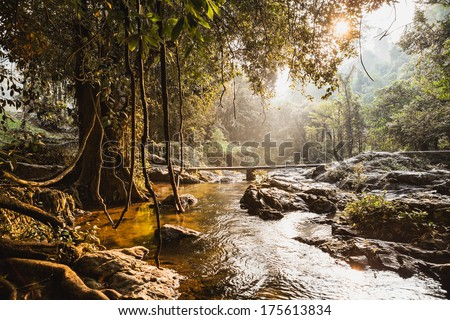 Rapid stream from waterfall in forest of Thailand - stock photo