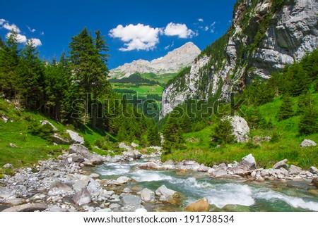 Rapid stream in the Swiss Alps valley near Klausen Pass, Uri, Central Switzerland - stock photo