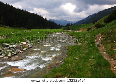 Rapid water stream flowing between mountains in spring time - stock photo