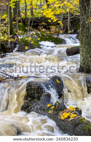 Rapids in the fall