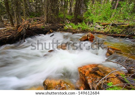 Rapids of Bucking Mule Creek in the Bighorn National Forest of Wyoming - stock photo