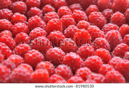Raspberries can be used as background - stock photo