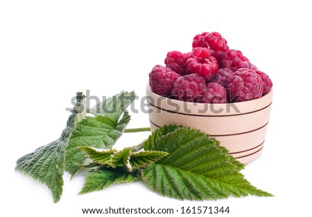 raspberries in a basket and empty space for your text