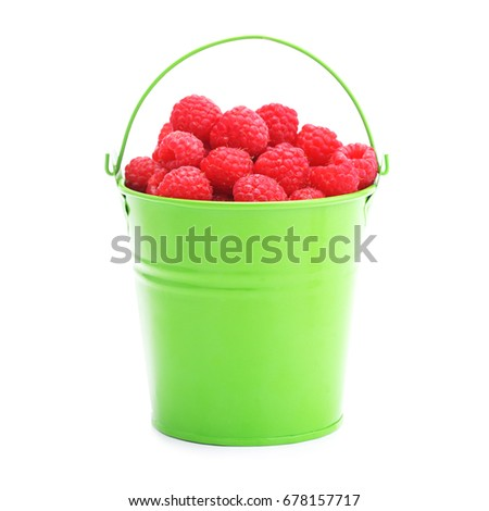 Raspberries in green bucket isolated on white background